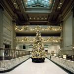 christmas-tree-1091532_1280